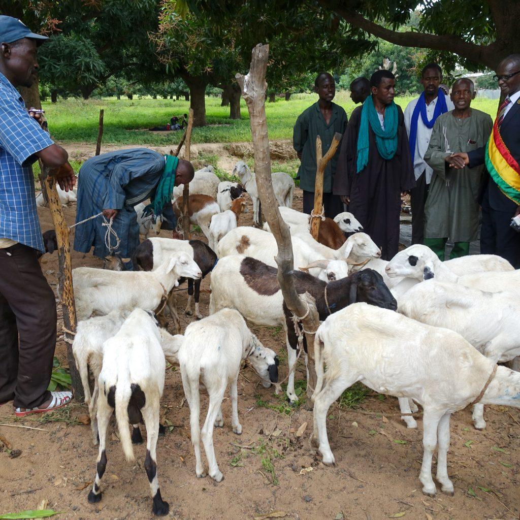 Der Viehmarkt